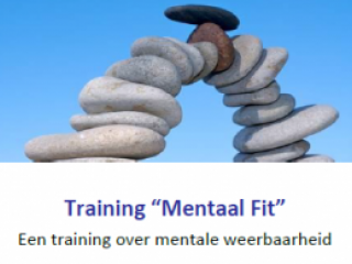 training mentaal fit, Impluz
